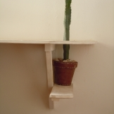 cactus -table